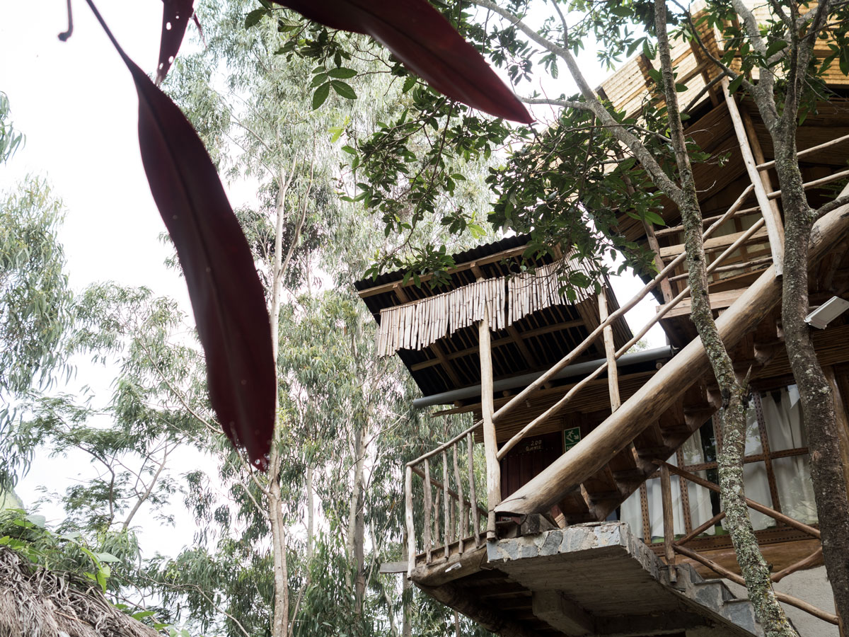 Peru-Cusco-treehouse-top-2