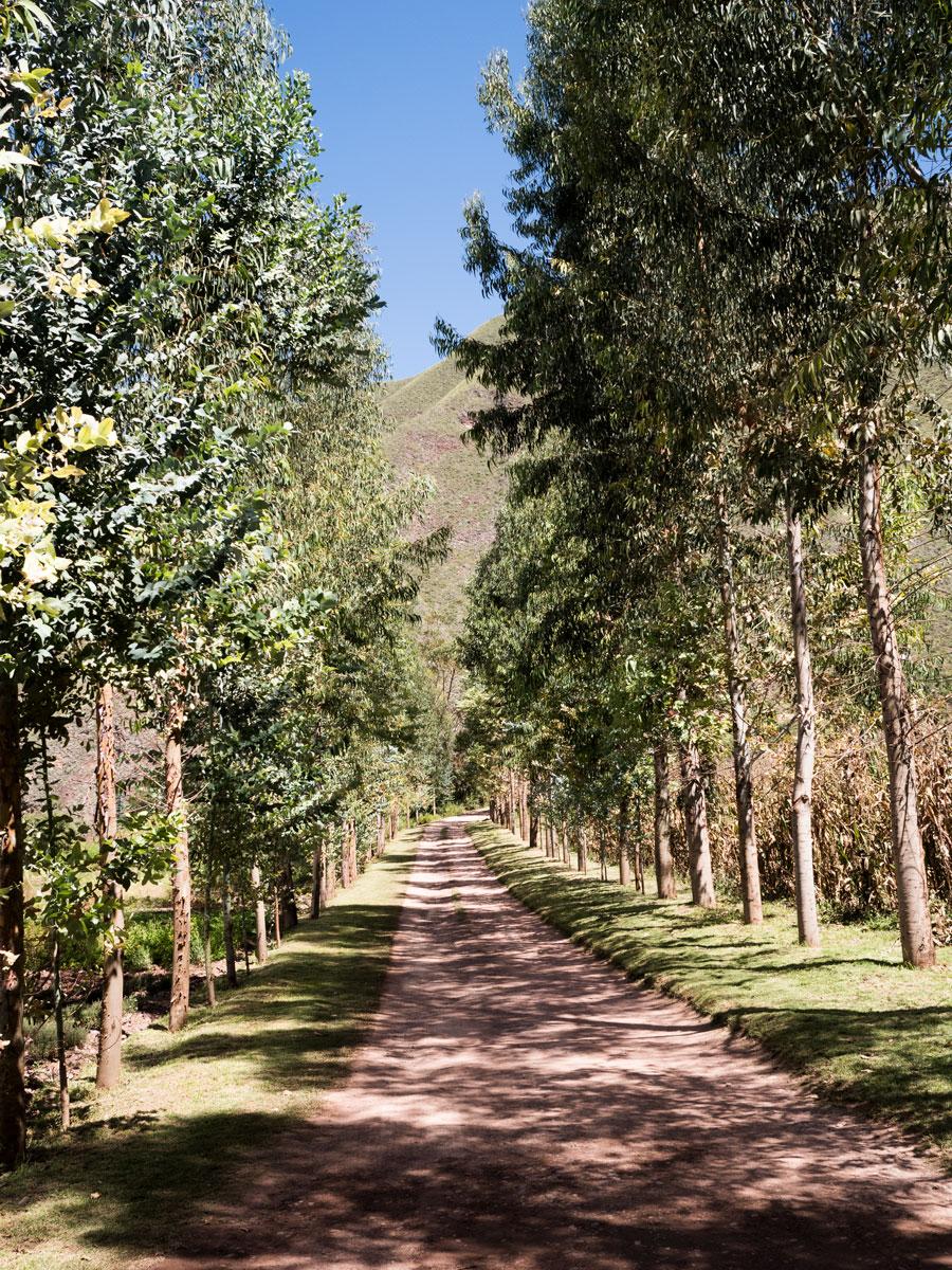 Peru-Inkaterra-Urumbamba-gardens-3