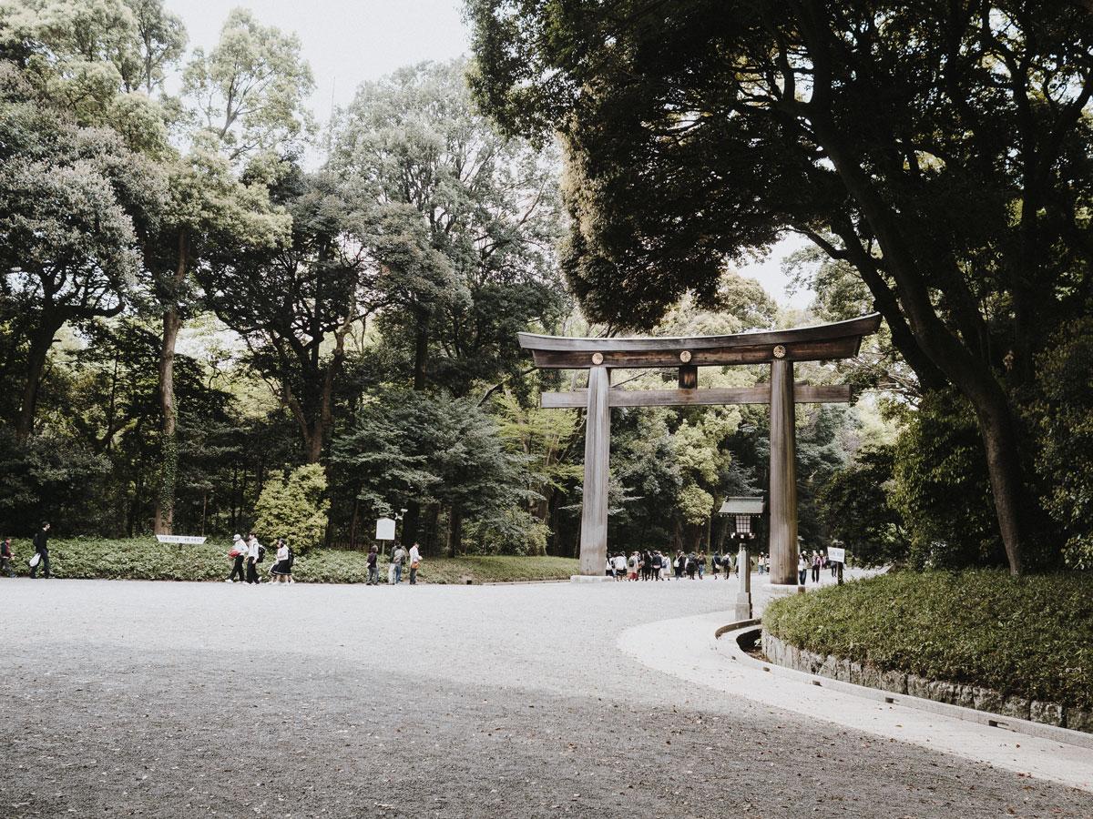 charlie-may-kuro-tokyo-japan-meiji-shrine-temple-19