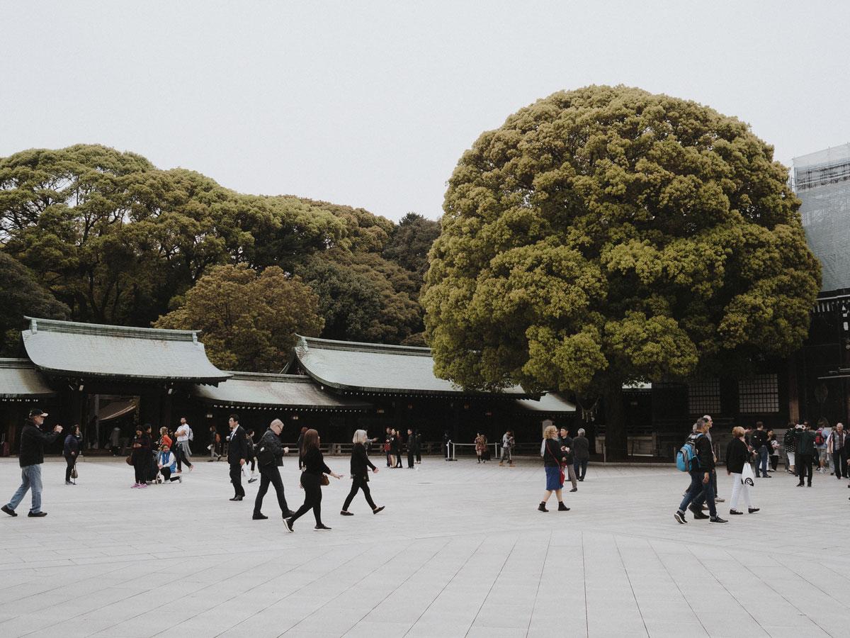 charlie-may-kuro-tokyo-japan-meiji-shrine-temple-23