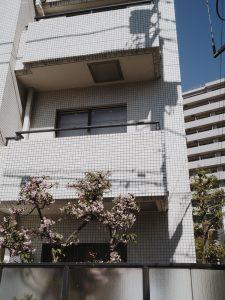 charlie-may-japan-tokyo-aoyama-25