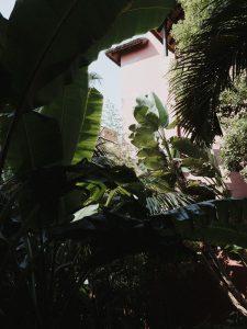 Asia_Gardens_Thai_Spa_1