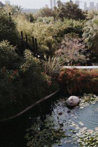 Asia_Gardens_Thai_Spa_10