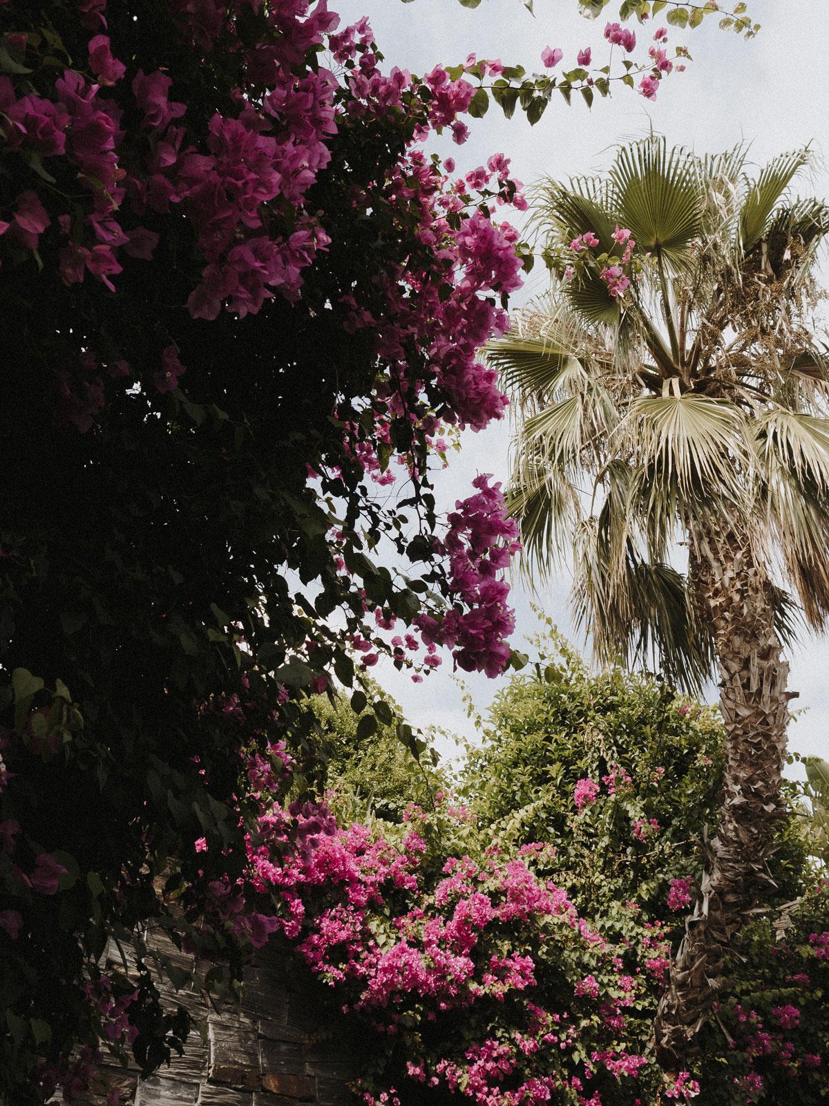 Asia_Gardens_Thai_Spa_27