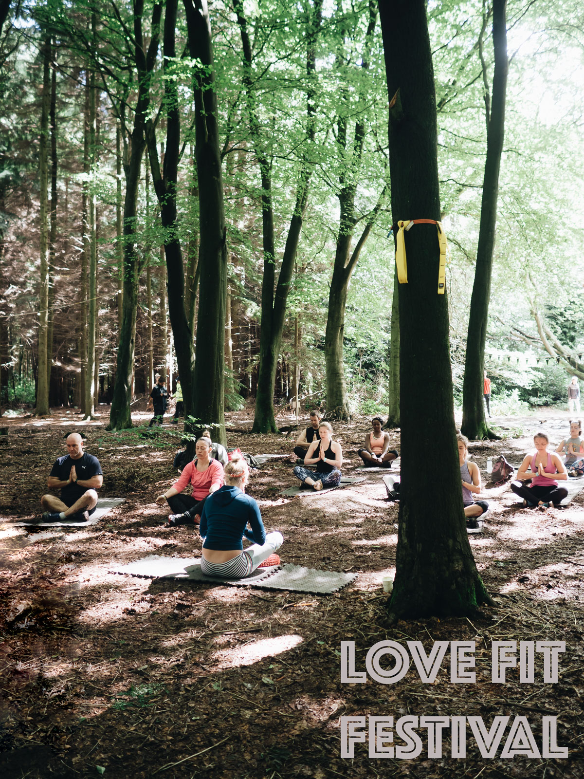 LoveFit_Festival_HEADER