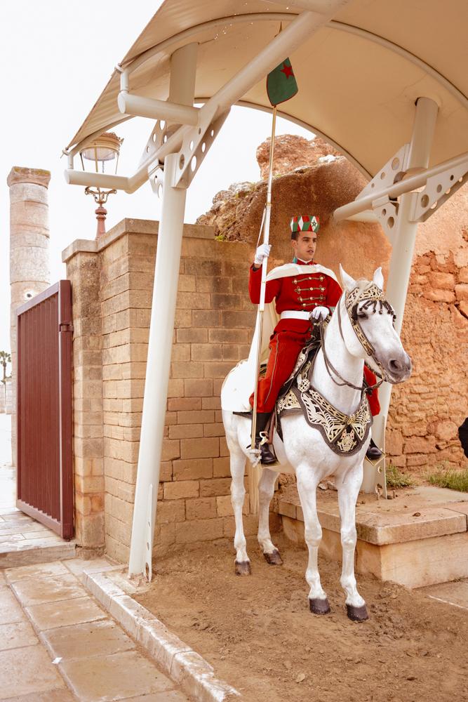 Morocco_Mausoleum_Mohammed_v_6